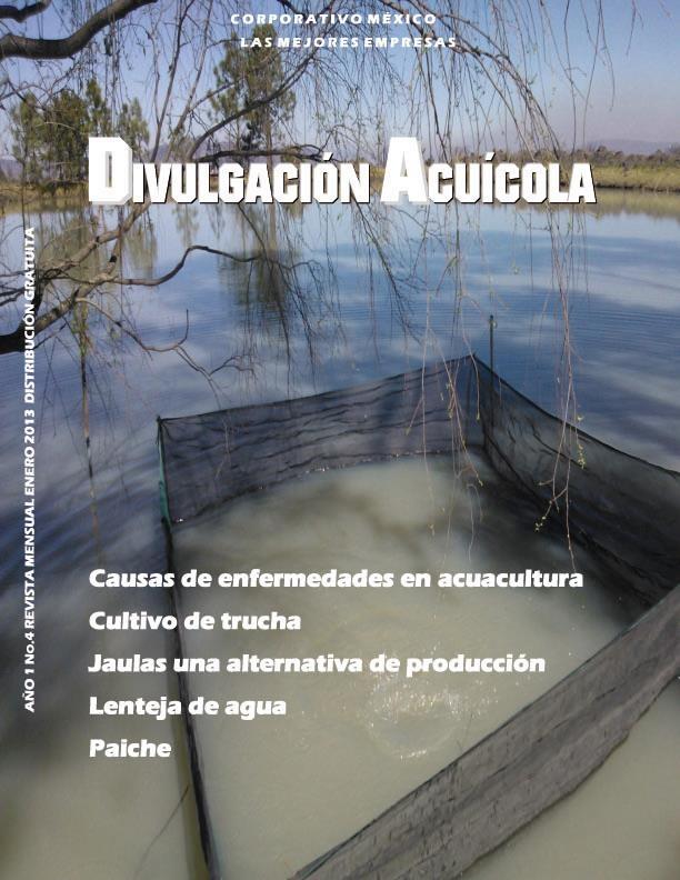 Revista del mes de Enero/2013