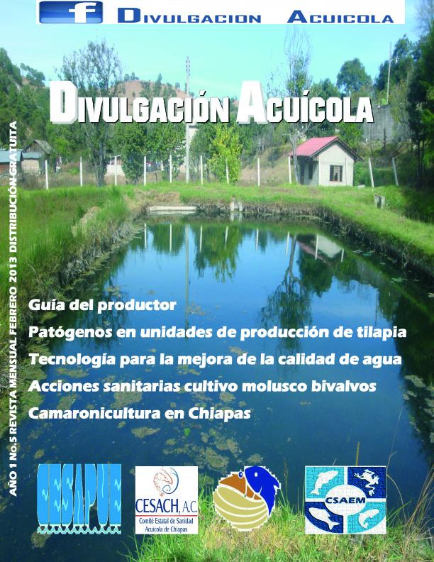 Revista del mes de Febrero/2013