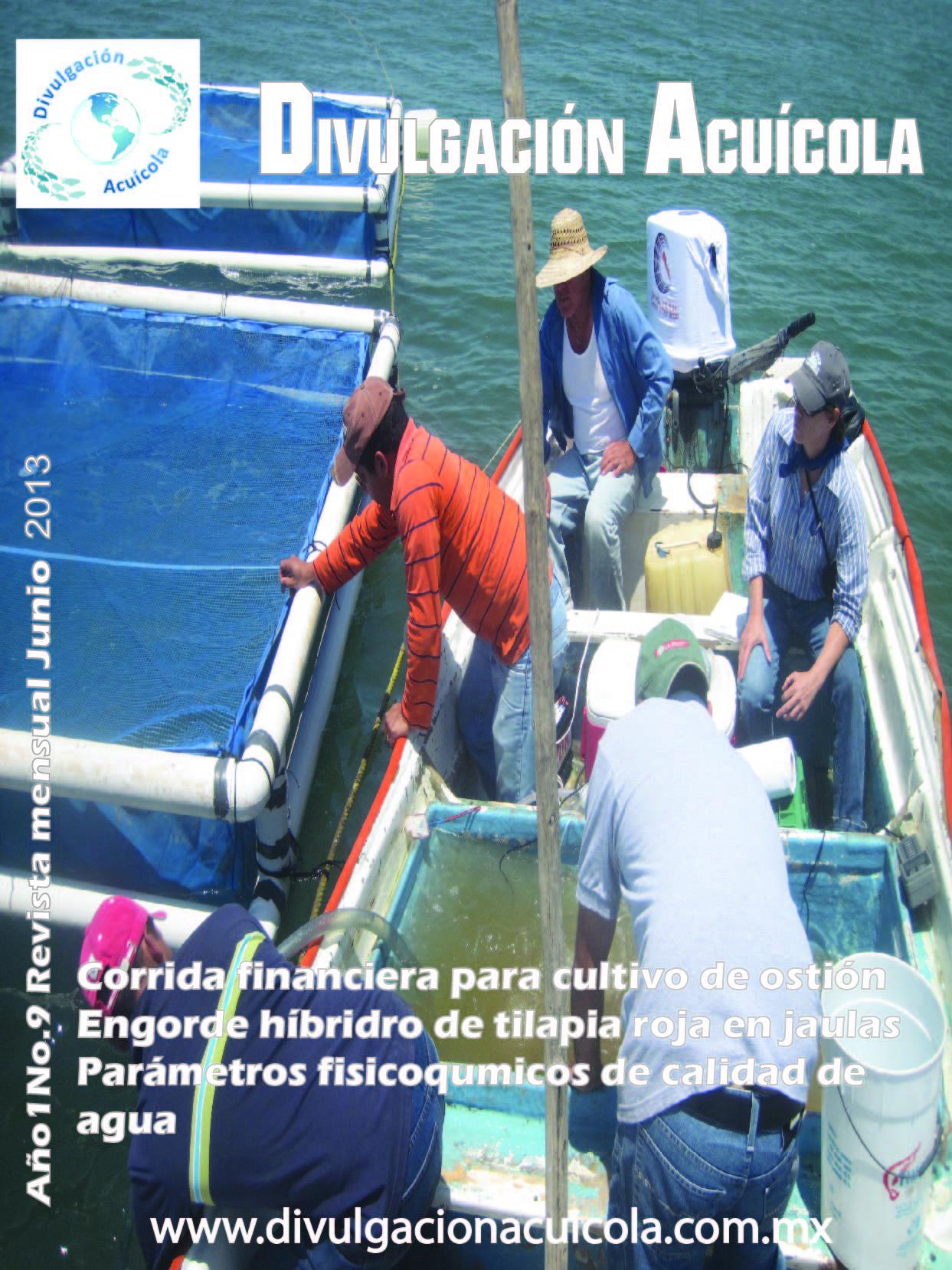 Revista del mes de Junio/2013
