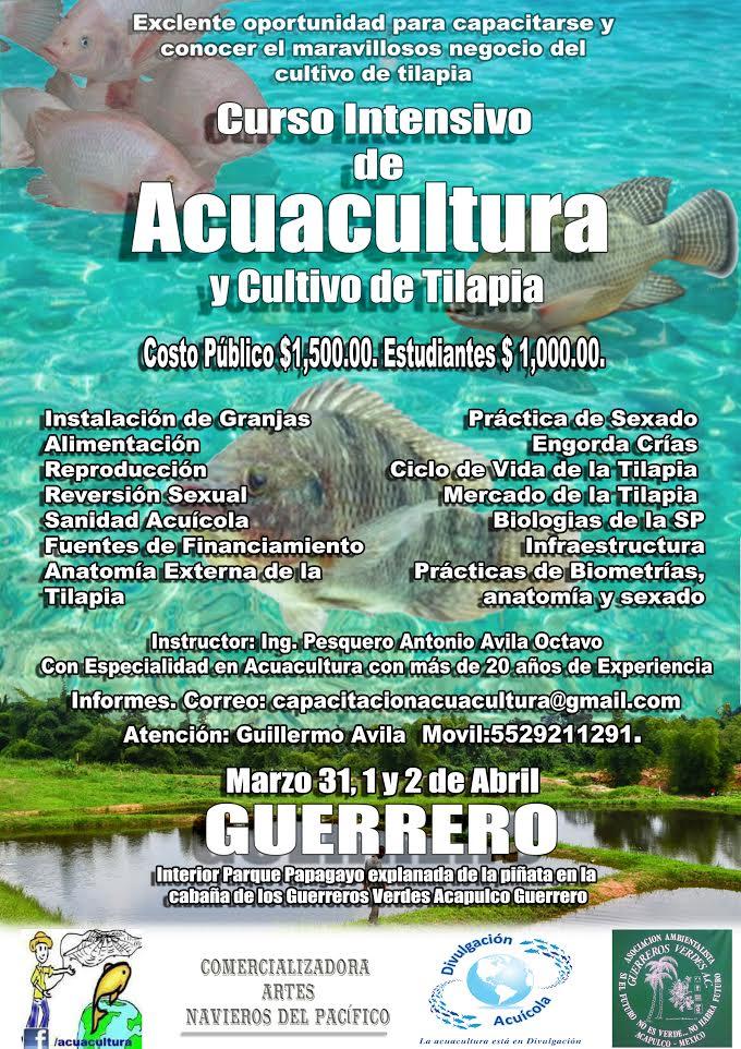 Curso Intensivo de Acuacultura y Cultivo de Tilapia en el Estado de ...