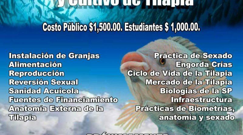 Curso de Capacitación Empresarial en Cultivo de Tilapia en Chiapas ...