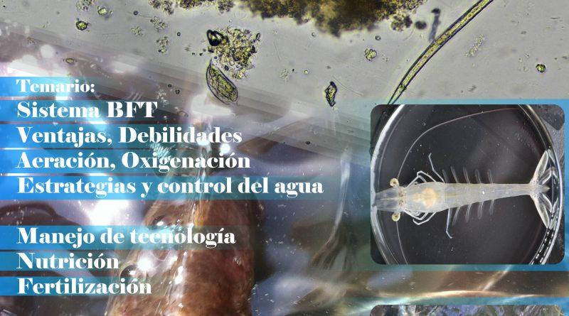 Curso de capacitacion empresarial en Biofloc