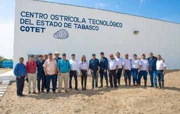 Desarrollará Sader Programa Nacional de Ostricultura para incrementar producción